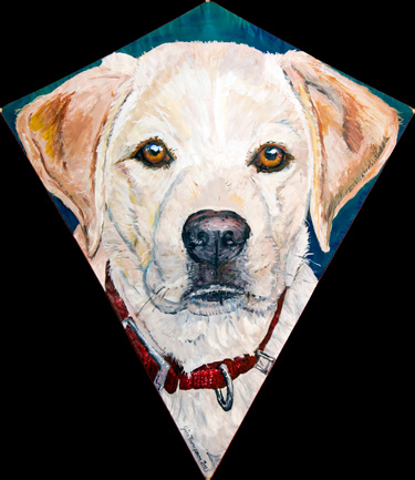 Golden Lab Kite