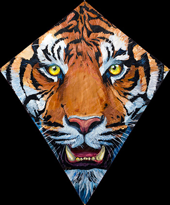 Tiger Kite for Tel Aviv
